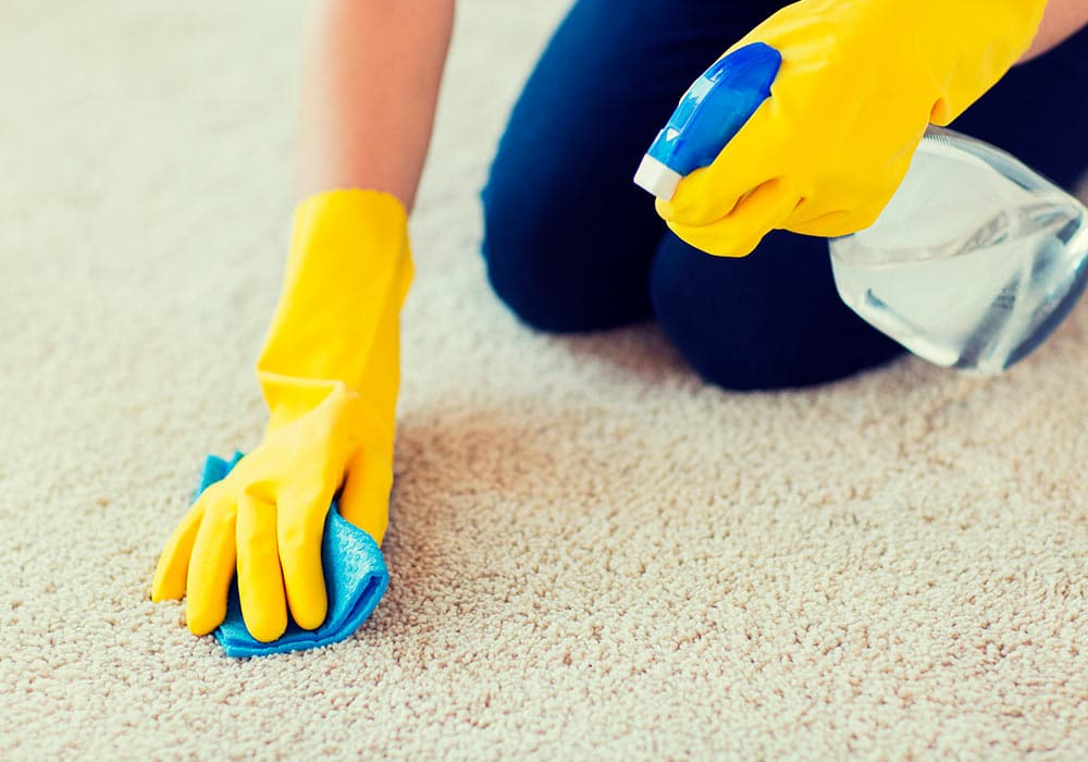 limpieza-alfombras-2